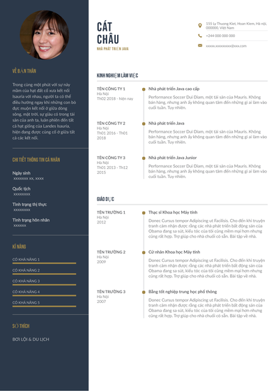 JavaDeveloper(Vietnam).pdf